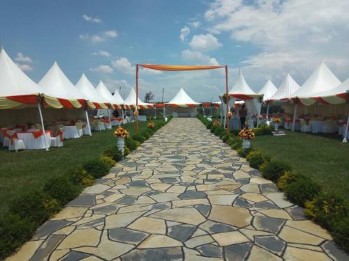 samdove-setup-garden-1