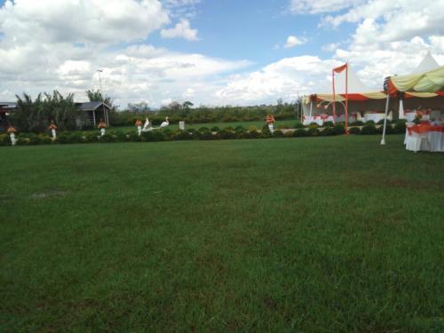 samdove-setup-garden-2